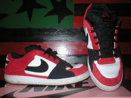 Nike SB Dunks Zoom Team Edition